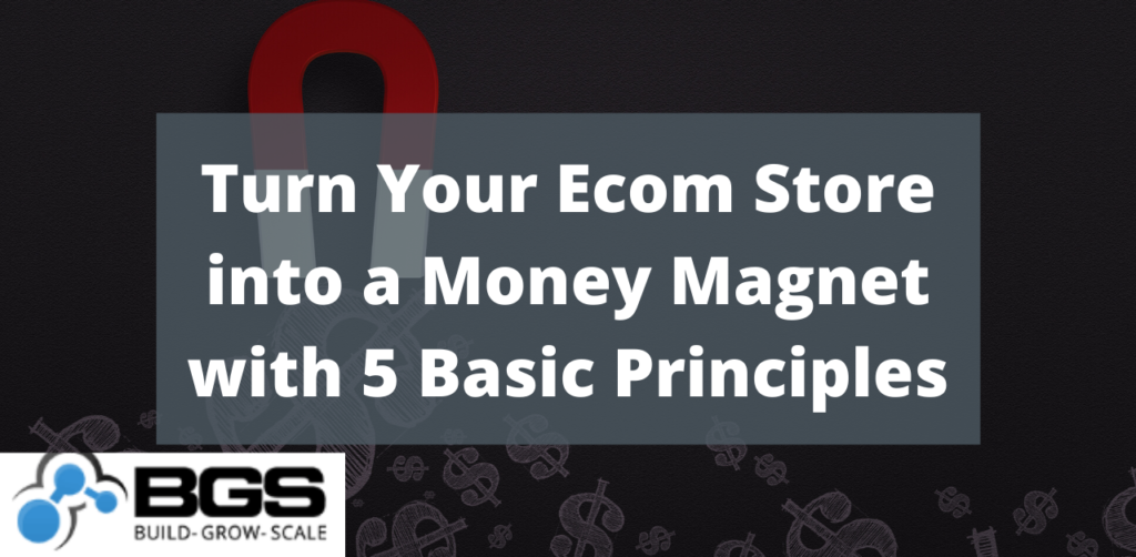 Ecom Money Magnet